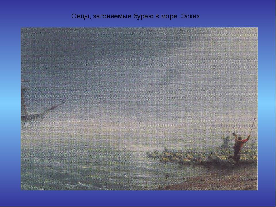 Овцы, загоняемые бурею в море. Эскиз