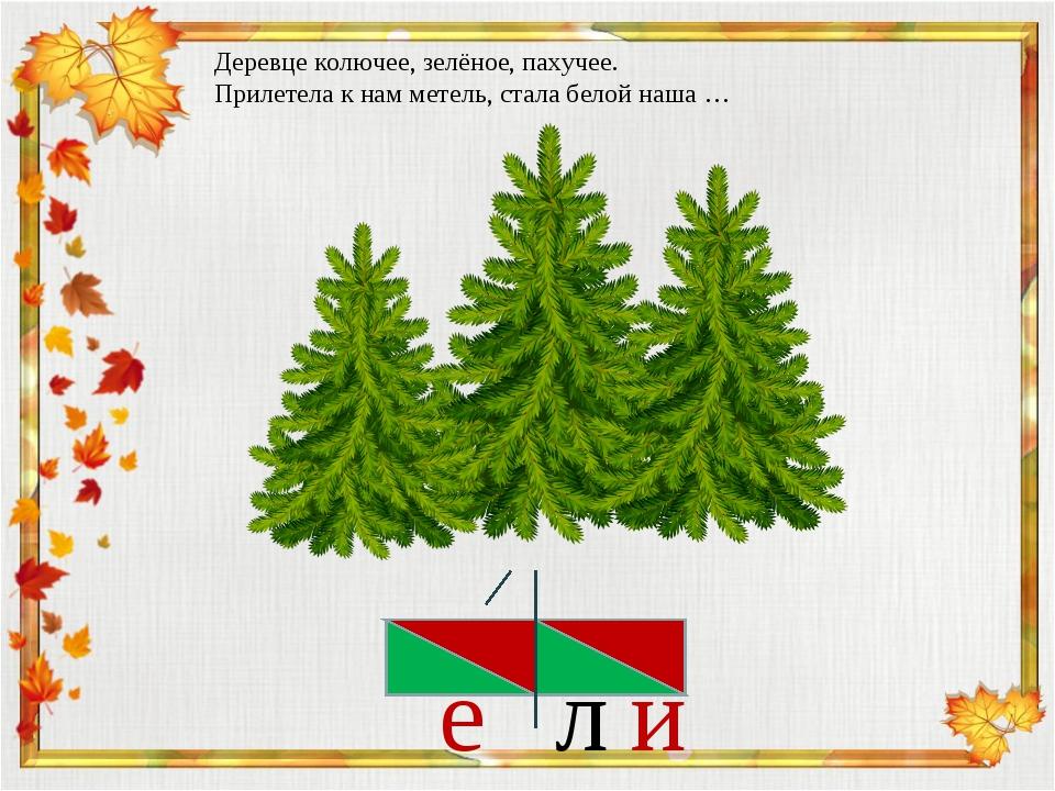 и л Деревце колючее, зелёное, пахучее. Прилетела к нам метель, стала белой на...