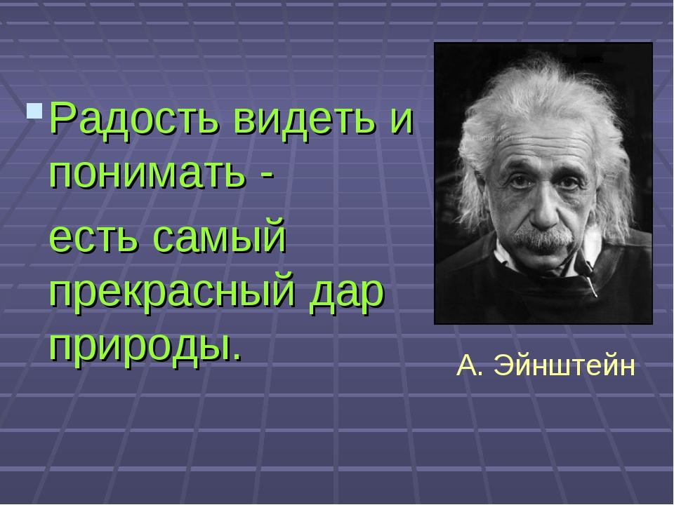 Радость видеть и понимать - есть самый прекрасный дар природы. А. Эйнштейн