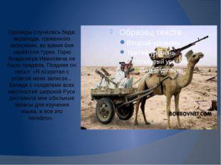 Однажды случилась беда: верблюда, груженного записками, во время боя захватил