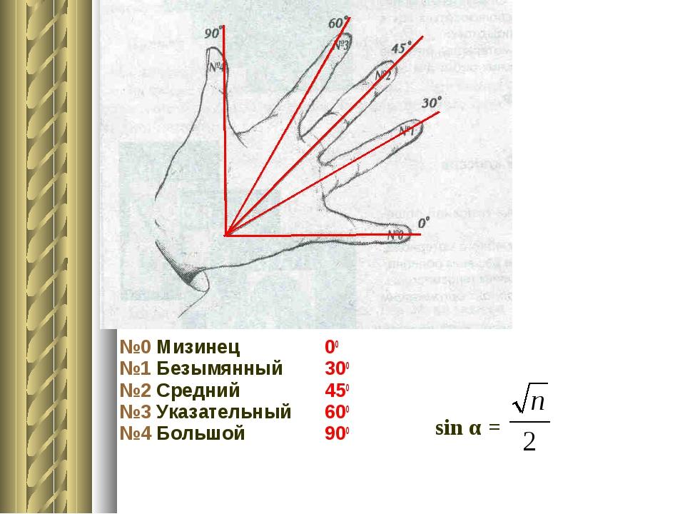 №0 Мизинец00 №1 Безымянный 300 №2 Средний450 №3 Указательный 600 №4 Бол...