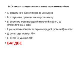 В6. Установите последовательность этапов энергетического обмена А. расщеплени