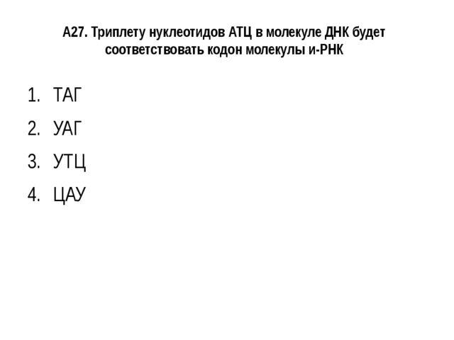 А27. Триплету нуклеотидов АТЦ в молекуле ДНК будет соответствовать кодон моле...