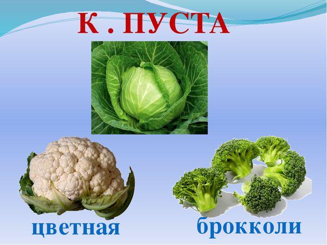 К . ПУСТА брокколи цветная