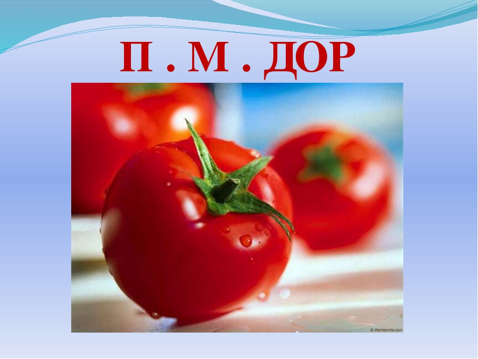 П . М . ДОР