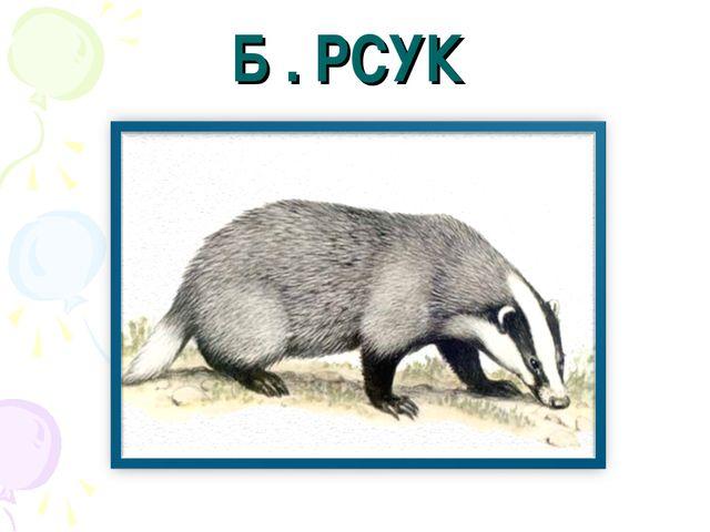 Б . РСУК