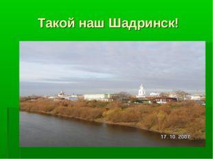 Такой наш Шадринск!