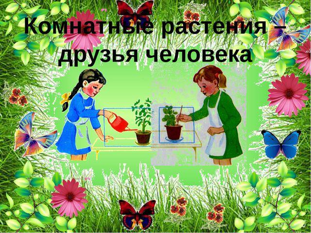 Комнатные растения – друзья человека