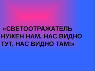 «СВЕТООТРАЖАТЕЛЬ НУЖЕН НАМ, НАС ВИДНО ТУТ, НАС ВИДНО ТАМ!»