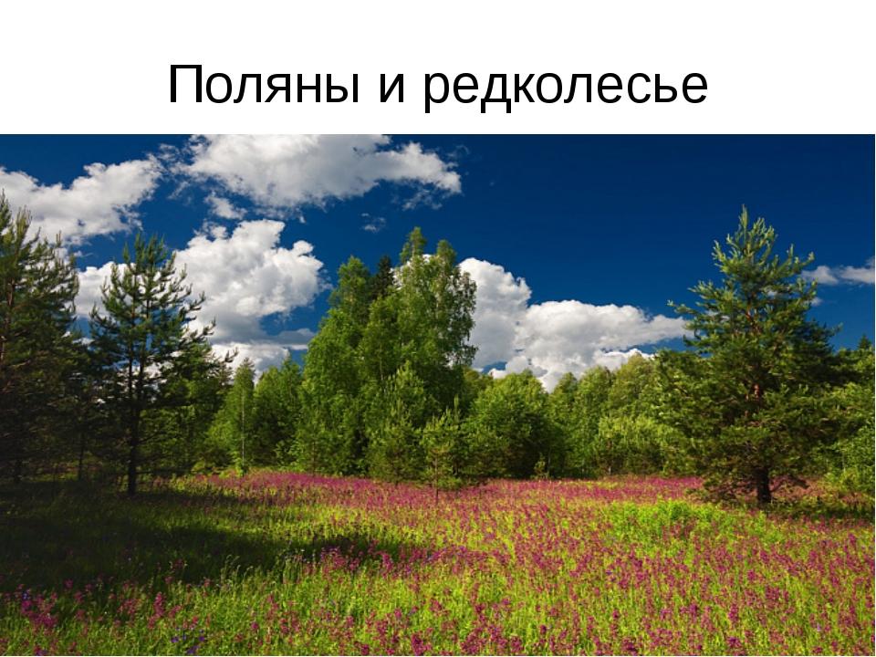 Поляны и редколесье