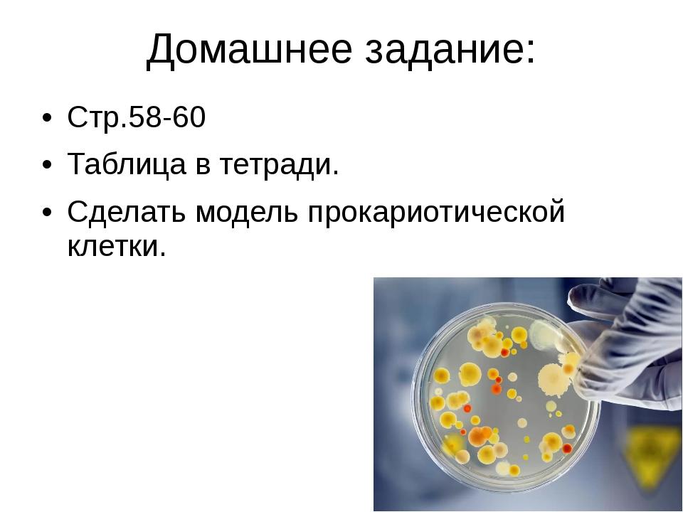 Домашнее задание: Стр.58-60 Таблица в тетради. Сделать модель прокариотическо...