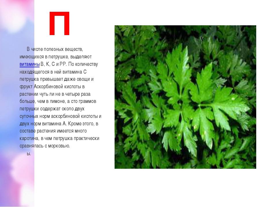 П В числе полезных веществ, имеющихся в петрушке, выделяютвитаминыВ, К, С и...