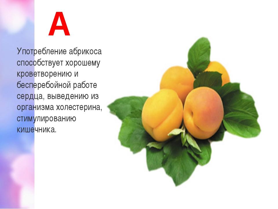 А Употребление абрикоса способствует хорошему кроветворению и бесперебойной р...