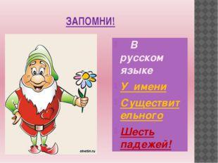 ЗАПОМНИ! В русском языке У имени Существительного Шесть падежей!