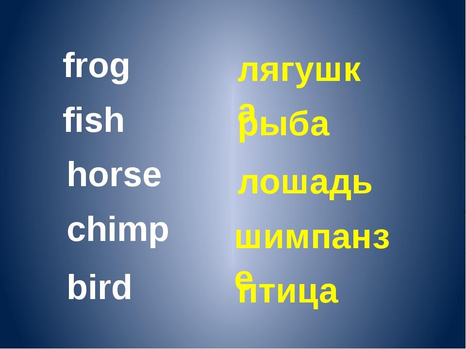 frog fish horse chimp лягушка рыба лошадь шимпанзе bird птица
