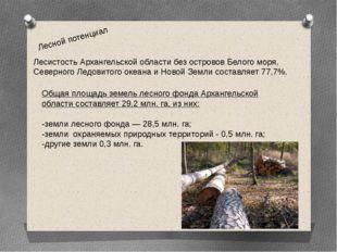 Лесной потенциал Лесистость Архангельской области без островов Белого моря, С