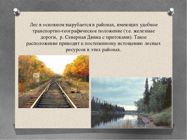 Лес в основном вырубается в районах, имеющих удобное транспортно-географическ...