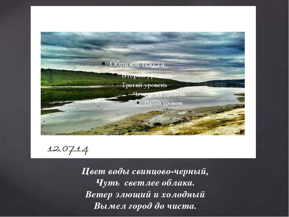Цвет воды свинцово-черный, Чуть светлее облака. Ветер злющий и холодный Вымел...