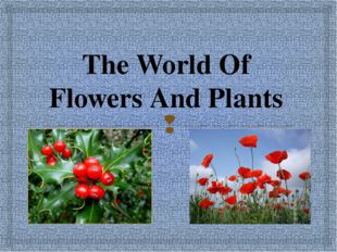 The World Of Flowers And Plants 