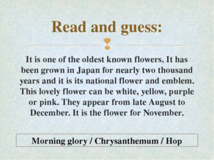 Read and guess: It is one of the oldest known flowers. It has been grown in J