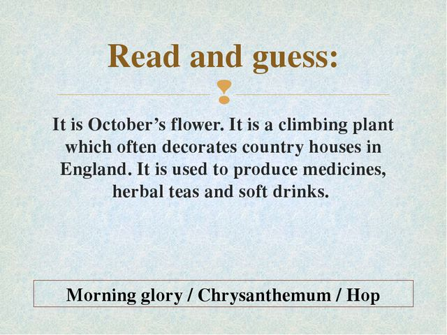 Read and guess: It is October's flower. It is a climbing plant which often de...