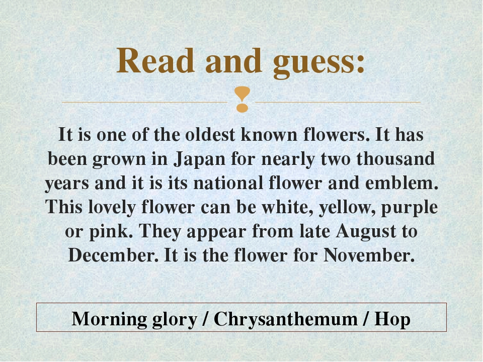Read and guess: It is one of the oldest known flowers. It has been grown in J...