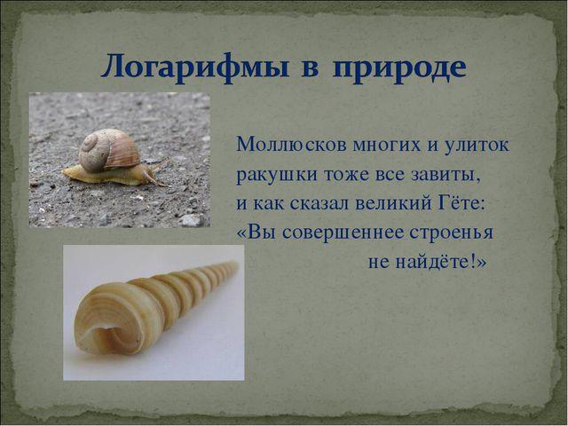 Моллюсков многих и улиток ракушки тоже все завиты, и как сказал великий Гёте...