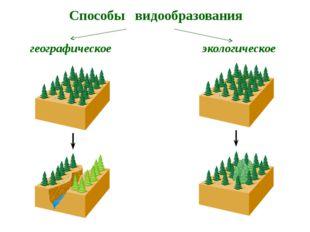 Примеры причин экологического видообразования Переход на другой вид пищи Разл