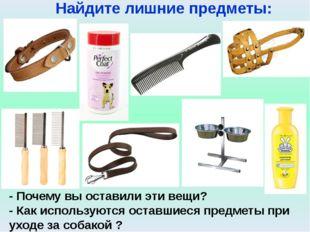 Интернет - ресурсы: http://www.xrest.ru/original/112413/ http://pda.privet.ru