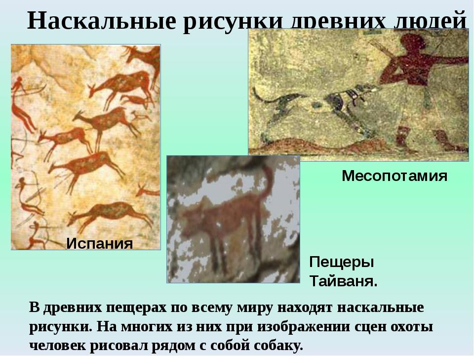 Наскальные рисунки древних людей Испания Месопотамия Пещеры Тайваня. В древни...
