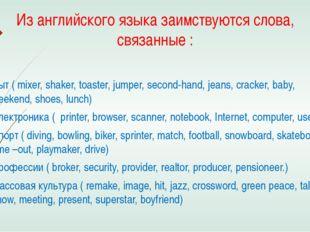 Из английского языка заимствуются слова, связанные : Быт ( mixer, shaker, toa