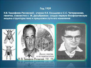 Макс Дельбрюк (1906-1981) - физик, генетик, вирусолог, лауреат Нобелевской пр