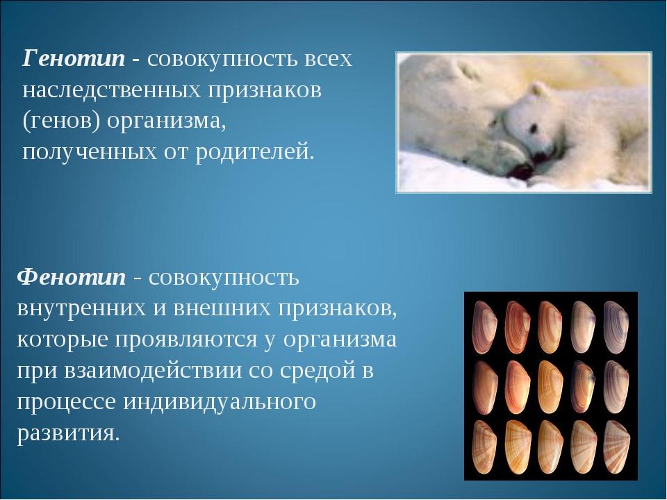 Генотип - совокупность всех наследственных признаков (генов) организма, получ...