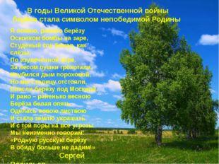 В годы Великой Отечественной войны берёза стала символом непобедимой Родины Я