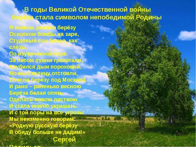 В годы Великой Отечественной войны берёза стала символом непобедимой Родины Я...