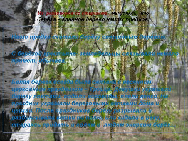 Из разговоров со старшими , мы узнали, что берёза – главное дерево наших пред...