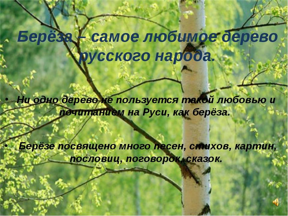 Берёза – самое любимое дерево русского народа. Ни одно дерево не пользуется т...