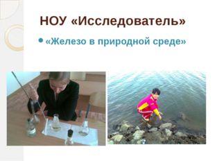 НОУ «Исследователь» «Железо в природной среде»