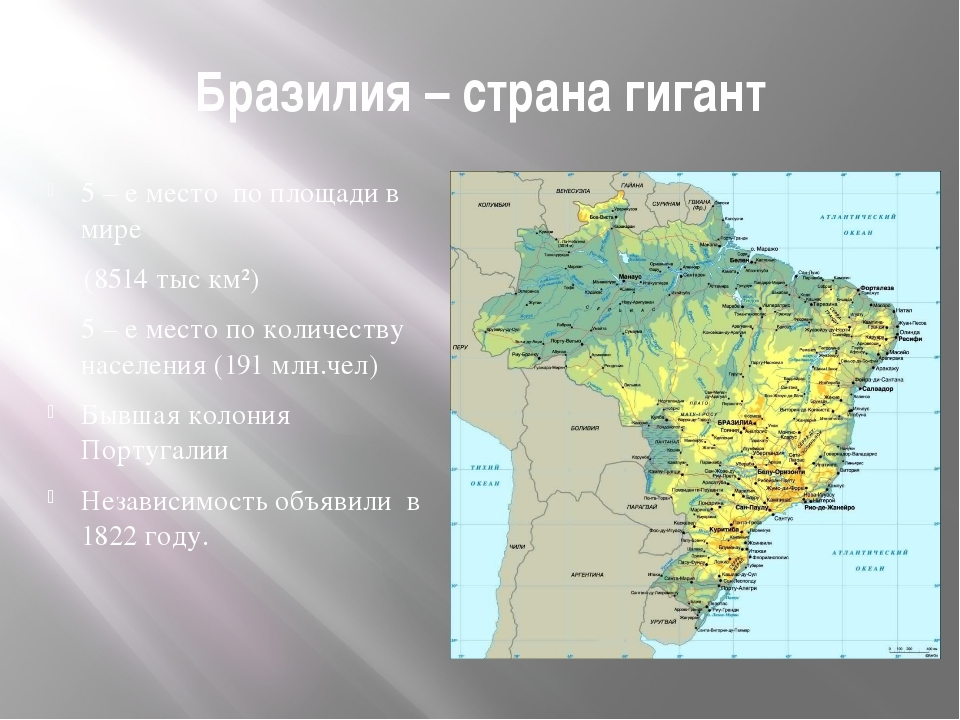 Бразилия – страна гигант 5 – е место по площади в мире (8514 тыс км²) 5 – е м...