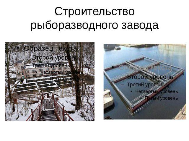 Строительство рыборазводного завода