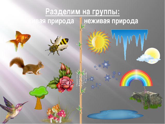 Разделим на группы: живая природа неживая природа