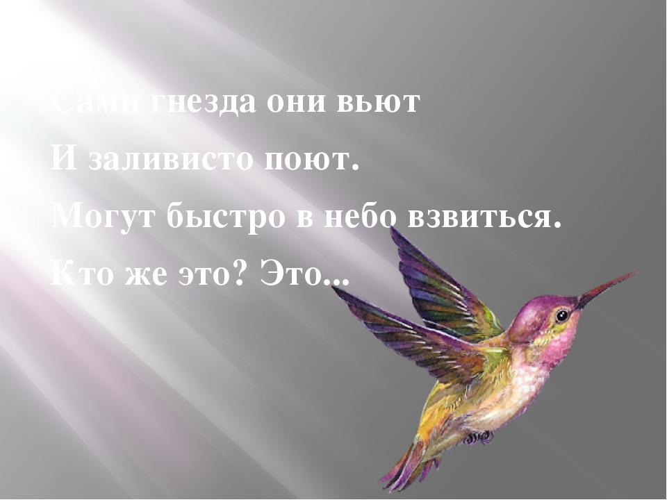 Сами гнезда они вьют И заливисто поют. Могут быстро в небо взвиться. Кто же...