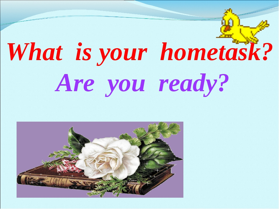 What is your hometask? Are you ready?