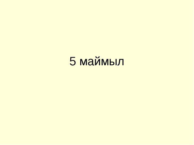 5 маймыл