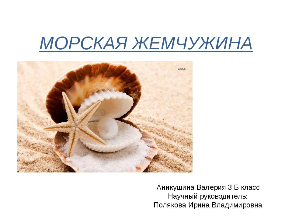 МОРСКАЯ ЖЕМЧУЖИНА Аникушина Валерия 3 Б класс Научный руководитель: Полякова...