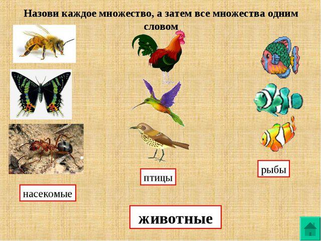 Назови каждое множество, а затем все множества одним словом насекомые птицы р...