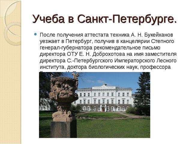 Учеба в Санкт-Петербурге. После получения аттестата техника А. Н. Букейханов...