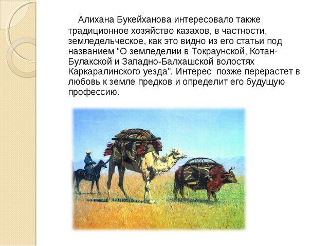 Алихана Букейханова интересовало также традиционное хозяйство казахов, в час...