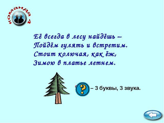 Ель – 3 буквы, 3 звука. Её всегда в лесу найдёшь – Пойдём гулять и встретим....