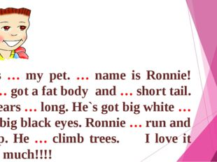 This … my pet. … name is Ronnie! He … got a fat body and … short tail. His e